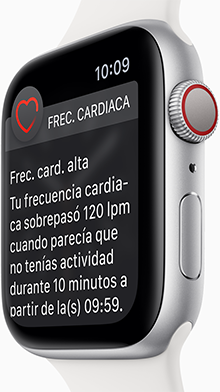 Apple Watch Series 4 Cardio Macstore