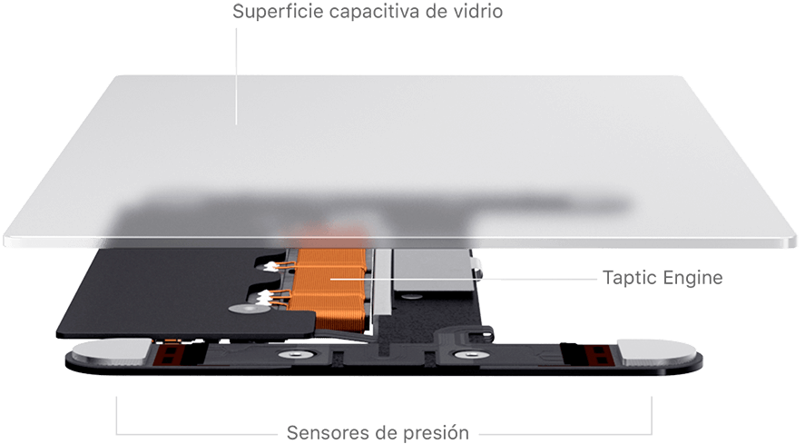 Estructura MacBook